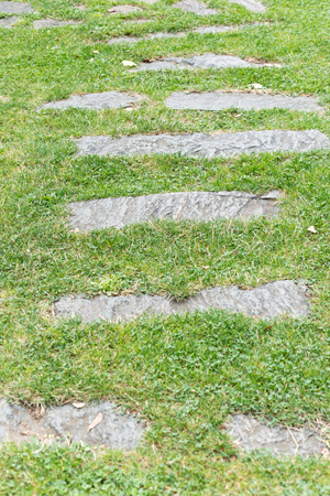Detail of a stone path in a grass meadow