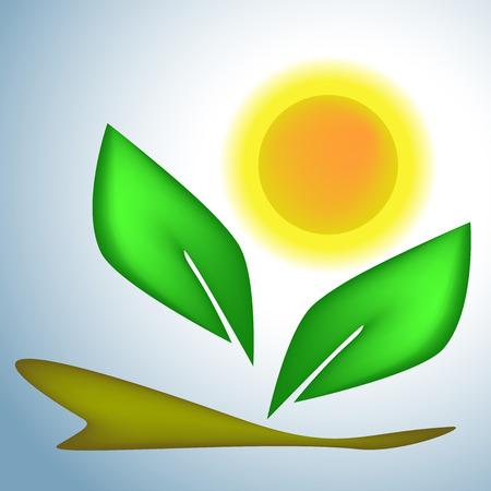 sun flower: Simple sun flower over blue background - solar.