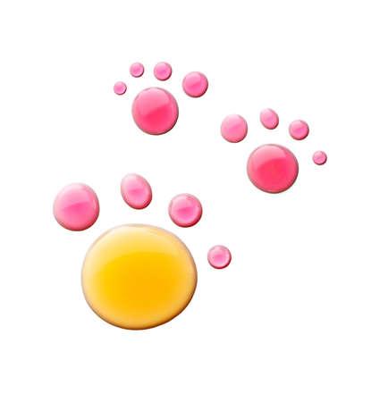 huellas de perro: Pata del animal desde el agua cae sobre un fondo blanco
