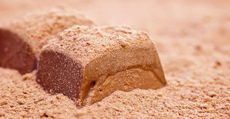 Piece of chocolate cocoa powder. Stock Photo - 9138953