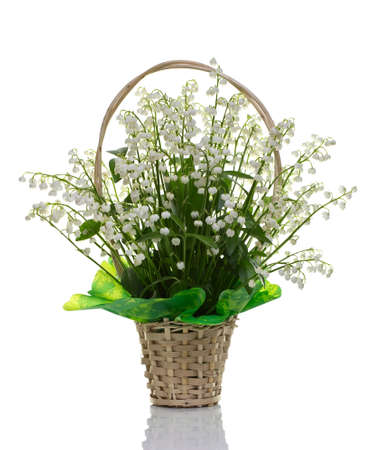 muguet: A bouquet of lilies of the valley on a white background.