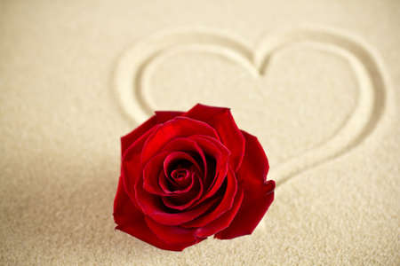 Red rose on the sandy surface of the heart. photo