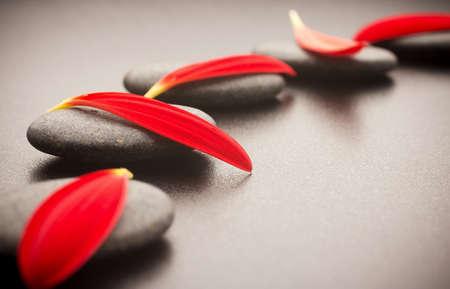 zen like: Spa stones and black background  Red gerbera petals