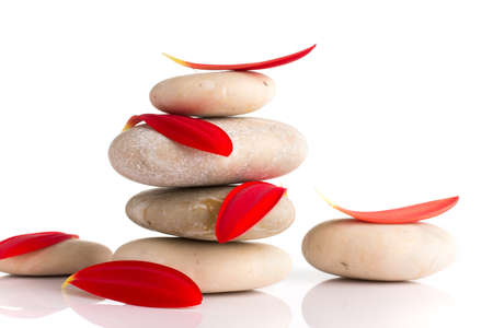 Spa stones and red gerber petals isolated on the white background. Stock Photo - 18302809