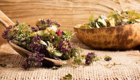 maccha: Dry herbal tea and the wooden spoon.