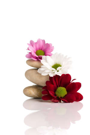 Spa stones and flowers isolated on the white background. Stock Photo - 18868846