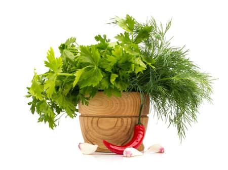 Fresh dill  and parsley isolated on the white background. photo