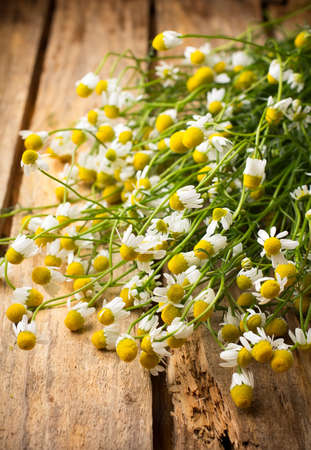Chamomile flowers on a wooden surface. Stock Photo - 20193294