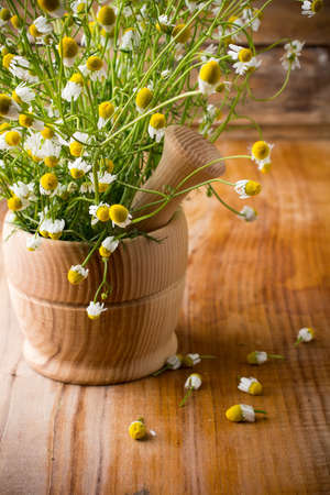 Chamomile flowers in mortar on a wooden surface. Chamomile aromatherapy. Stock Photo - 20193321