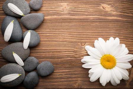 Balanced Spa Steine ??mit Kamillenblüten und hölzernen Hintergrund. Standard-Bild - 20887509