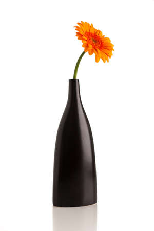 home accent: Gerbera in vase isolated on the white background.