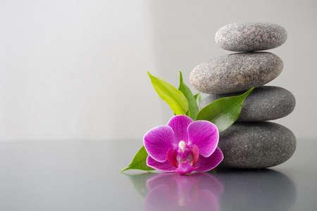 スパの石と緑の葉、光沢のある灰色の背景にピンクの蘭。 写真素材