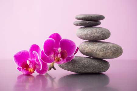 Spa stones pink orchid and pink background  photo