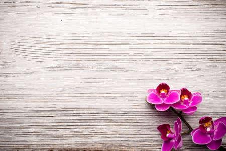 Piedras del balneario en el fondo de madera con orquídeas. Foto de archivo