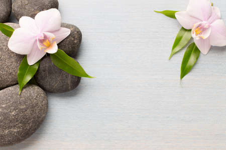 Orchid flower on wooden background with spa stones.