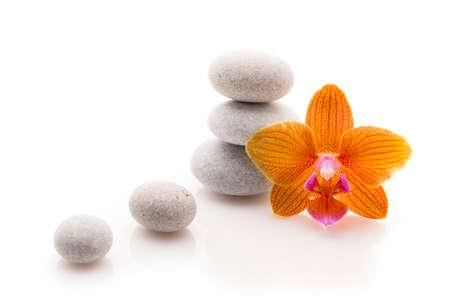 studio photography: Spa massage stones with orchid. Studio photography. Stock Photo