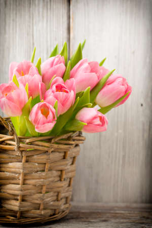 beautiful flowers: Pink tulips in a bucket. Home Decor.
