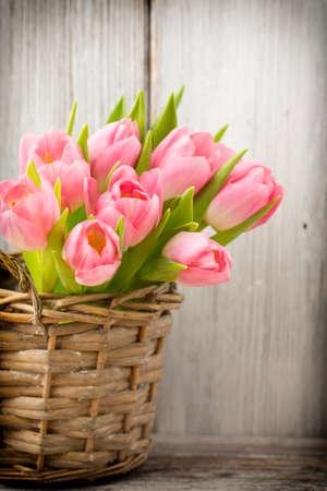 bouquet fleurs: Tulipes roses dans un seau. Home Decor. Banque d'images