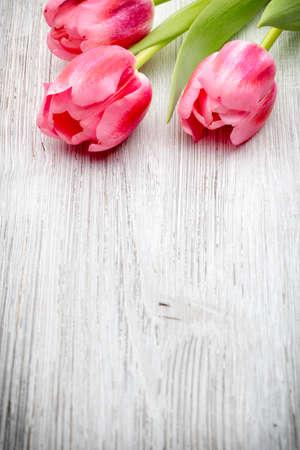 tulipan: Różowe tulipany na tle drewnianych.