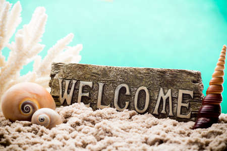 welcom: Underwater coral, shells and sand. Sea scene.
