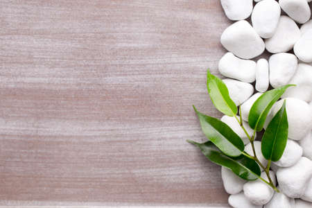 white pebble: White pebble stone frame and leaf. Background.