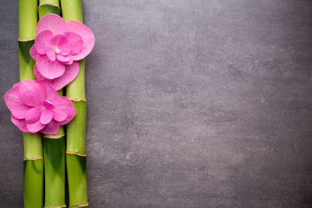 Close-up van spa thema objecten op een grijze achtergrond.