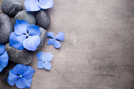 zen: Spa stones treatment scene, zen like concepts.