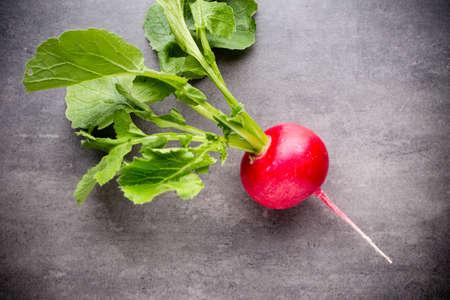 radishes: Radishes on the grey . Still life. Stock Photo