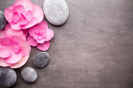 Close-up van spa thema objecten op grijs.