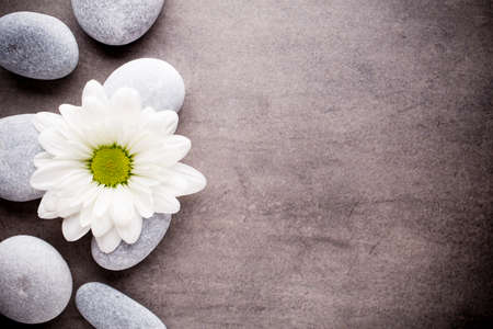 zen spa: Spa stones with a flower Stock Photo