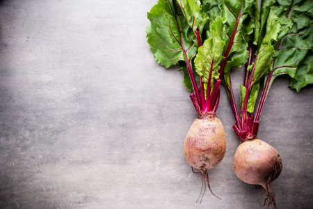 beets: The new beets