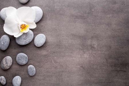 スパ石と灰色の背景の上に白蘭。 写真素材