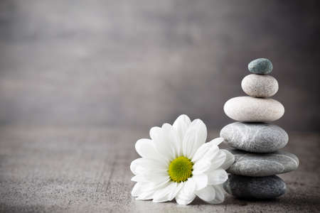 Spa stones and flower, zen like concepts.