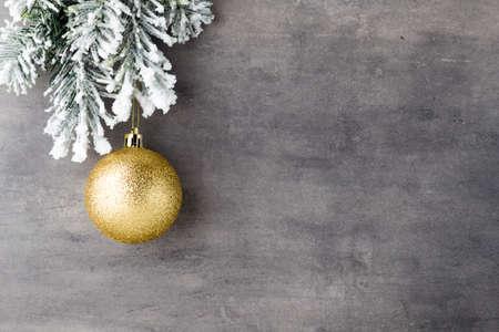 evergreen branch: abeto cubierto de nieve en la tabla gris.