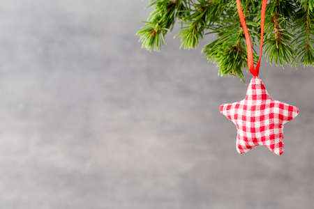 christmas decor: Christmas fir branch and decor, on the wooden background.