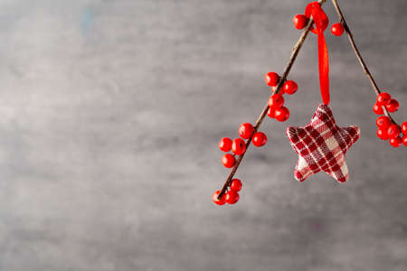christmas decor: Branch with red berries, Christmas decor. Stock Photo