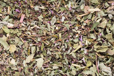 medicinal plants: Herbal tea medicinal plants, homeopatic. Stock Photo