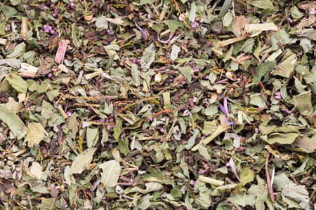 plantas medicinales: té de hierbas plantas medicinales, homeopático.