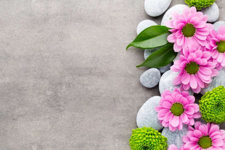 spa flower: Spa stone and flowers on grey background.