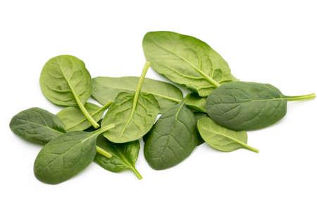 spinach: espinacas frescas aisladas en el blanco. Foto de archivo