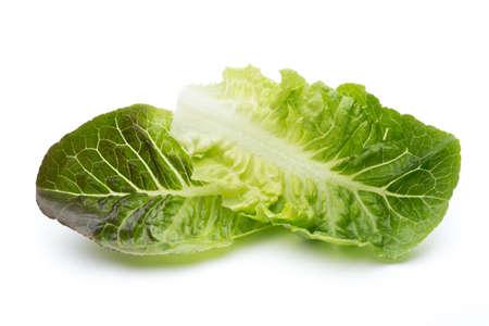 frilly: Oak Leaf lettuce isolated on white background. Stock Photo