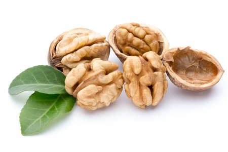 Walnut and walnut kernel isolated on the white background.
