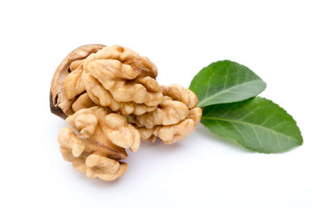 kernel: Walnut and walnut kernel isolated on the white background.