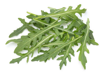 Close up studio shot of green fresh rucola isolated on white background.