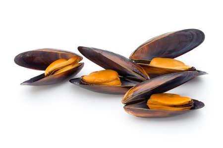 ムール貝は、白い背景で隔離。海の食べ物。