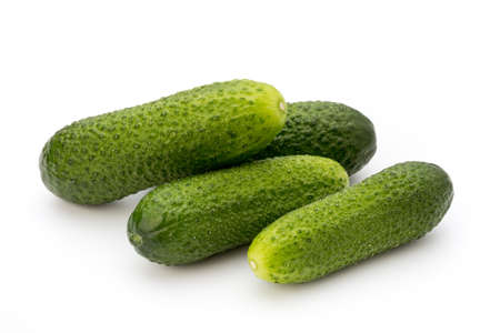 four objects: The first spring ecologically cucumbers.