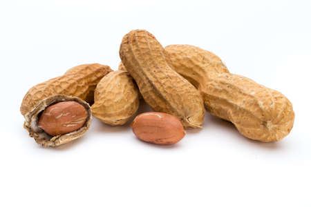 Dried peanuts on the white background. Banco de Imagens - 96862347