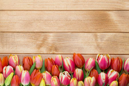 Spring greetings card with tulips for Easter, Mother's Day. Stock Photo