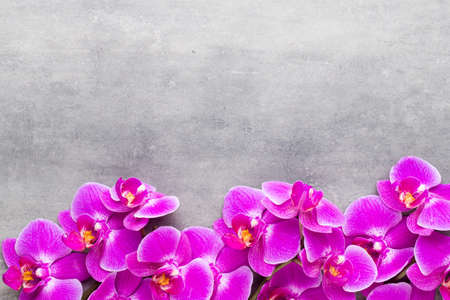 Orchid and spa stones on a stone background. Spa and wellnes scene. Foto de archivo - 99378847