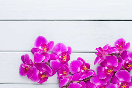 Orchid and spa stones on a stone background. Spa and wellnes scene. Foto de archivo - 99378854